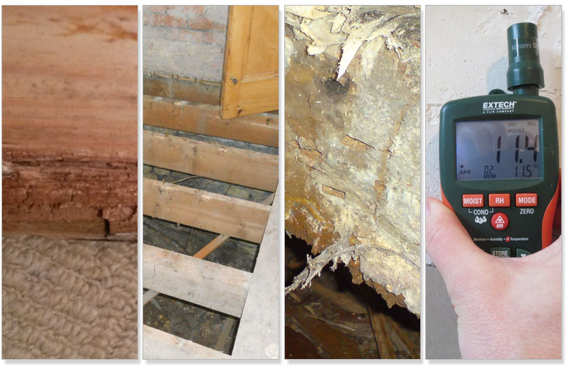 we offer free damp surveys to homeowners in Barnsley