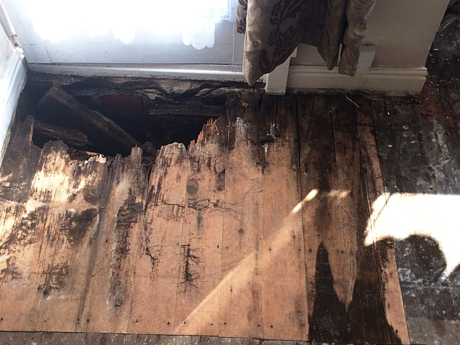 specialists in dry rot treatments in Barnsley