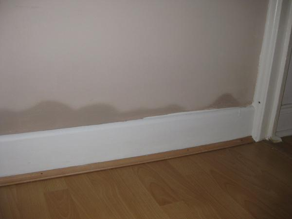 professional treatments for rising damp in barnsley