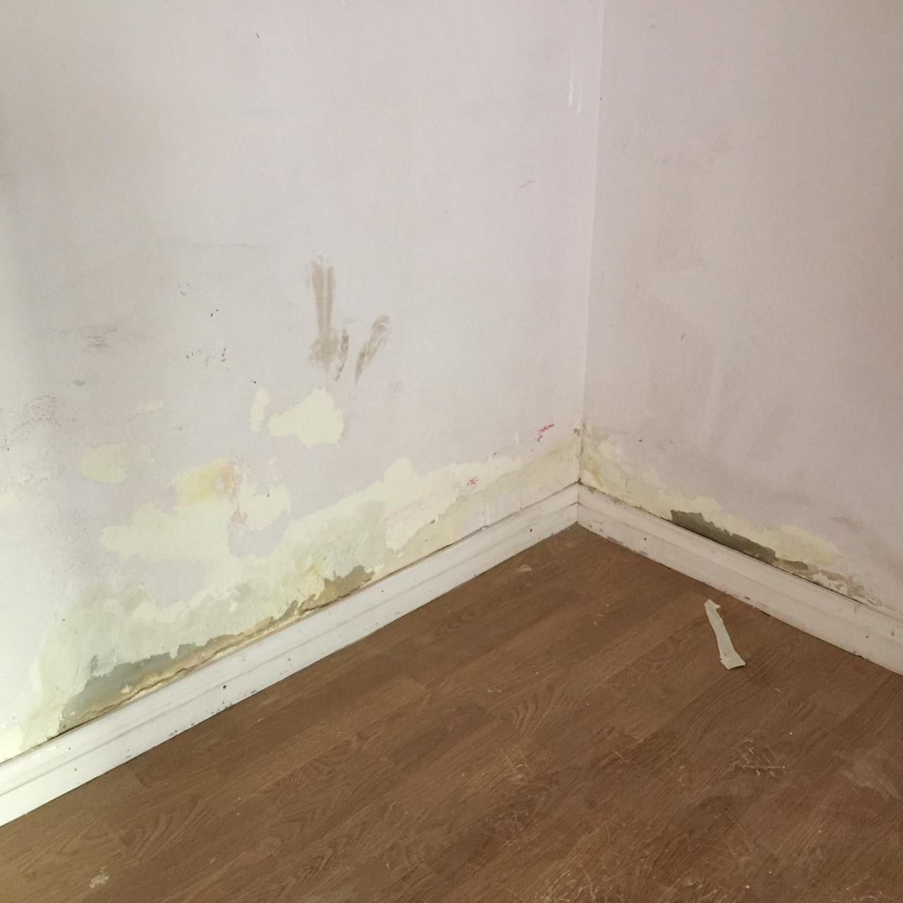 your local damp proofing company in Barnsley
